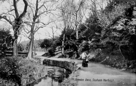 Postcard photograph entitled Dawdon Dene, Seaham Harbour, showing a stream, running away to the left, in the centre of the picture; on its left, are two trees and, on the right, a woman is walking towards the camera, with a steep wooded slope on the right